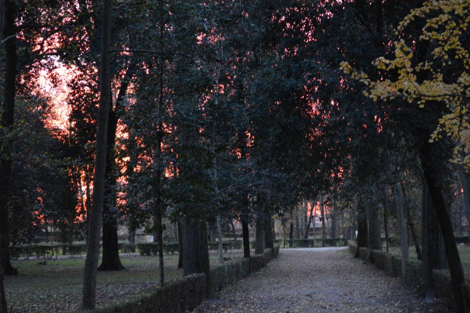 florencia park